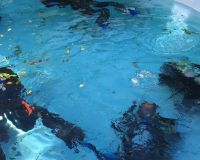 pool-session-tauchen-bodensee-10